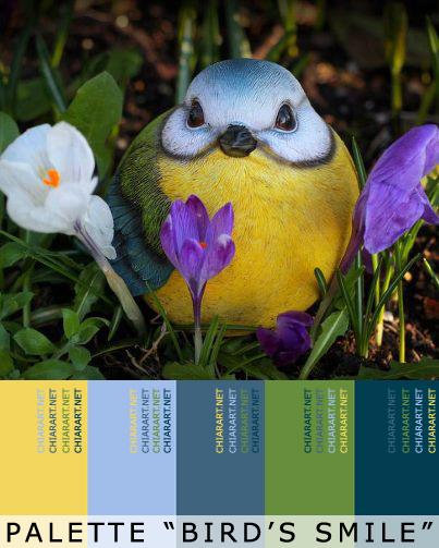 palette-birdsmile