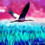 L'Uccello porta la sua puntuale musica